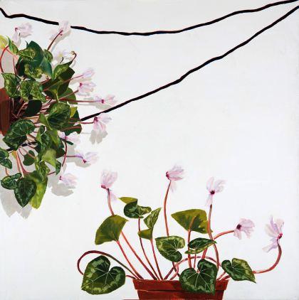 Cyclamen, Painting by Maayan Shira