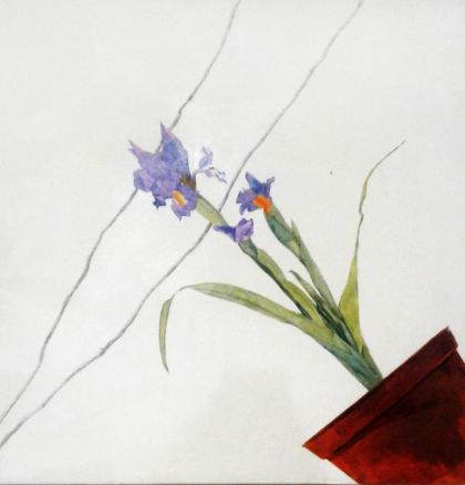 Iris, Painting by Maayan Shira